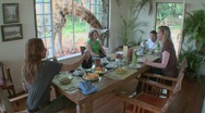 Stock Video Footage of A giraffe interrupts a breakfast at a house in Africa.