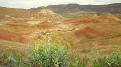 Painted Hills Stock Footage