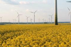 Alternative Energy Mix Stock Footage