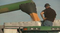 Corn into bin Stock Footage