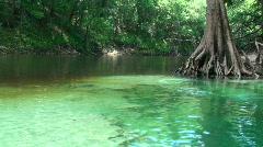 Pot Spring Florida 2 - stock footage