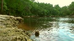 Suwannee River 1 Stock Footage