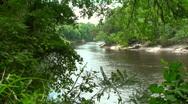 Suwannee River 4 Stock Footage