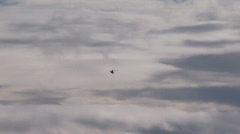 Coast Gaurd helicopter Stock Footage