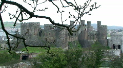 Castle Through Tree's - stock footage