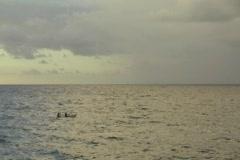 Puerto Rico - Kayaks in Open Sea 2 Stock Footage