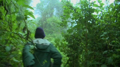 Men move through the jungle on the Congo Rwanda border. Stock Footage