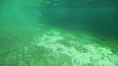 Drift From Spring to River Stock Footage