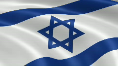 Israel FlagInTheWind Stock Footage