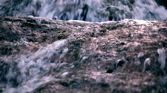 Spring flow Stock Footage