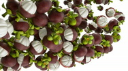 Stock Video Footage of Mangosteen flow with slow motion