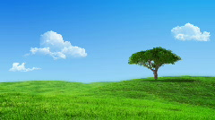 Growing up tree animated backdrop Stock Footage