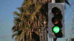 Urban Traffic Light with Palm Trees HD Stock Footage