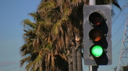 Stock Video Footage of Urban Traffic Light with Palm Trees HD