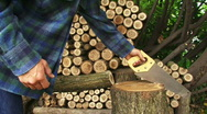 Sawing Wood 1 Stock Footage