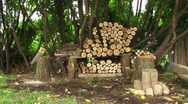 Man and Wood Pile 2 Stock Footage