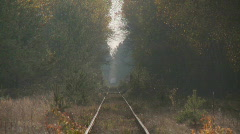 Forest railway Stock Footage
