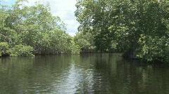 P01052 Exploring a Jungle River Stock Footage