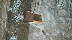 Birdhouse in snowfall 3 - stock footage