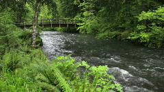 Bridge over Silver Creek Stock Footage