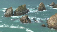 Catlins, New-Zealand, nugget point Stock Footage