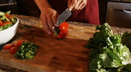 Stock Video Footage of hands chopping a red pepper