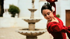 Beautiful Spanish Flamenco Dancer Stock Footage