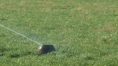 Sprinkling the grass Stock Footage