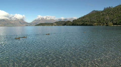 Westcoast Southern Island New-Zealand Stock Footage