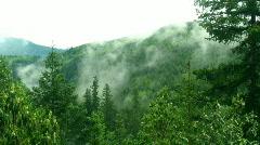 Time Lapse Valley Fog Washington 1080P Stock Footage