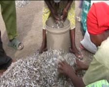 African women Stock Footage