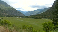 Agriculture, green field in mountain valley Stock Footage