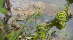 The environment, diesel fuel spill on water Stock Footage