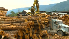 Logging truck and skidder, #1 Stock Footage