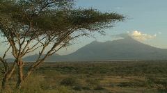 Mt. Meru in the distance, across the Tanzania savannah. - stock footage