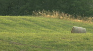 Stock Video Footage of Summer on the Farm in the Countryside with Rolling Hills and Farms