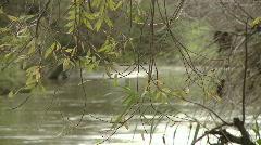 Jordan river 4 Stock Footage