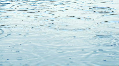 Rain on a pond Stock Footage