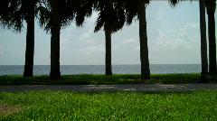 Floridascene Stock Footage