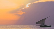 Stock Video Footage of A beautiful sunset shot of dhow sail boat sailing off the coast of Zanzibar.