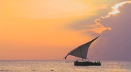 Stock Video Footage of A beautiful shot of a dhow sailboat sailing along the coast of Zanzibar against