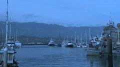 Boats in Marina 02 Stock Footage