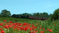 Steam train in the countryside, JVC GY-HM100E Stock Footage
