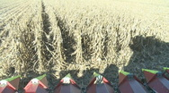Timelapse of corn harvest from harvester cab Stock Footage