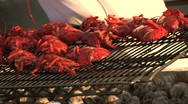 Stock Video Footage of Lobster Grill