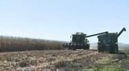 Corn unloaded long shot Stock Footage