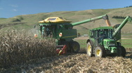 Harvester unloads corn Stock Footage