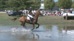 Eventing horse and jumps Stock Footage