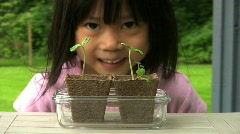 Little Asian Girl Admiring Her Plants - stock footage