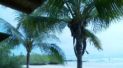 Isabela Island Stock Footage